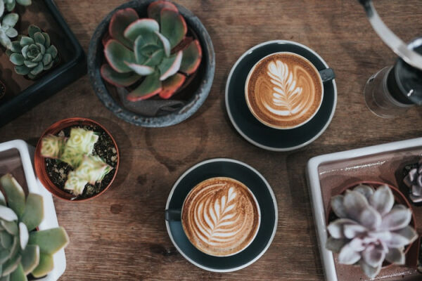 A picture of some coffee and cactus on a table