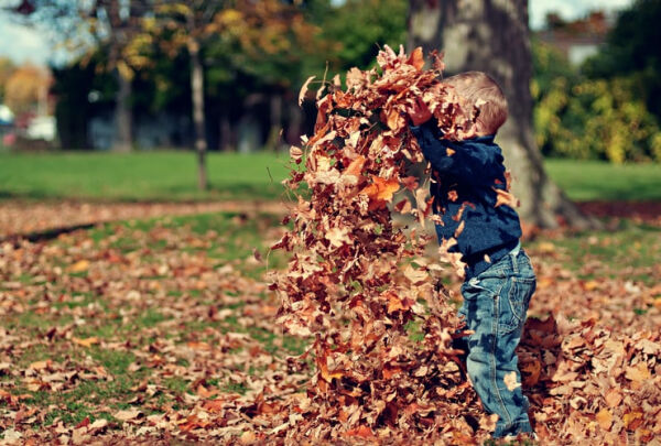 A picture of a child playing with a pile of leaves