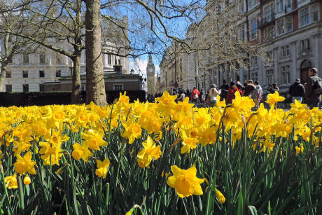 Things to Do in London Over May Bank Holiday